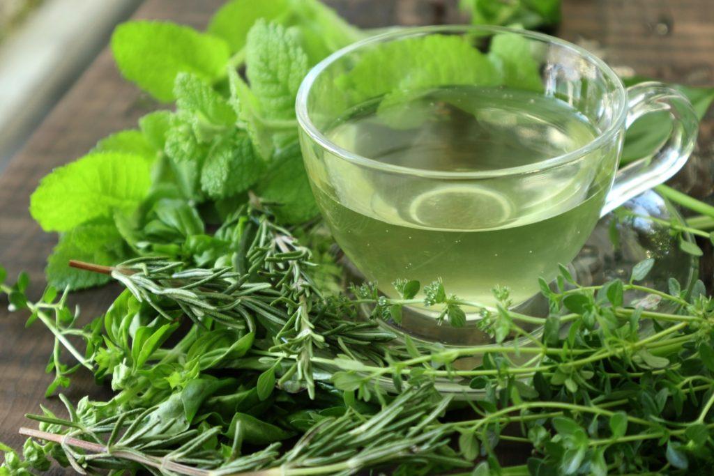 植物の力でセルフケア「手軽に健康ケア!」